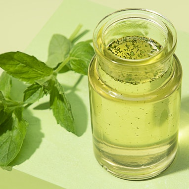 Mint Infused Syrup